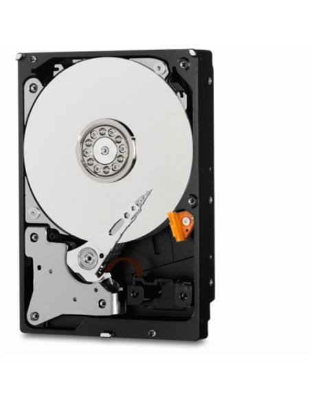 PC Intel Core i5-7400 Quad Core/Ram 8GB/PC Assemblato Barebone Computer Desktop